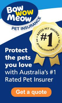 Pet insurance promo box